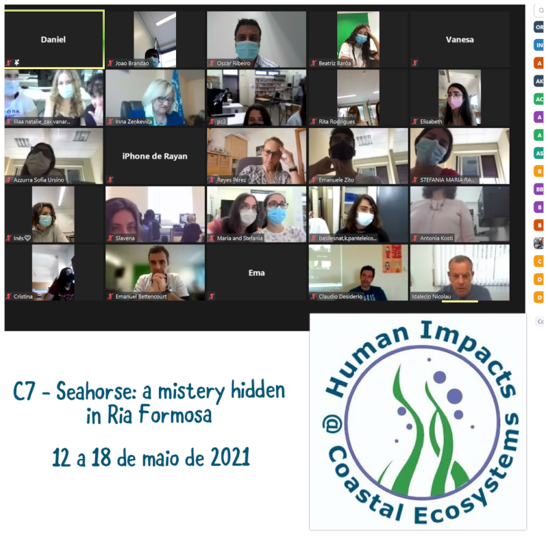 "Projeto Erasmus+ ""Human Impacts @ Coastal Ecosystems"" C7 - Seahorse: a mistery hidden in Ria Formosa"